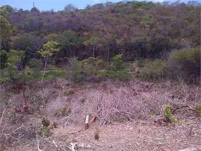 Land for sale at Canelles Vieux-Fort