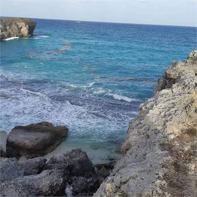 Land For Sale By The Sea Cliff - Bottom Bay, Barbados